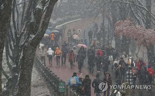 서울에 첫눈…1cm미만 저녁6시까지 흩날릴 듯