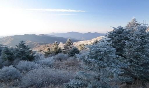 첫눈 관측, 충청·서해안 곳곳 눈발 날려‥ 서울 오늘 첫눈 올까?