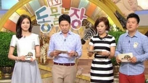동물농장, 박태환 경기일정 중계방송으로 결방