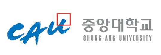 [2013 대입 수시전형] 중앙대학교