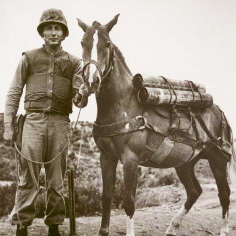 [만파식적] 한국전 영웅馬