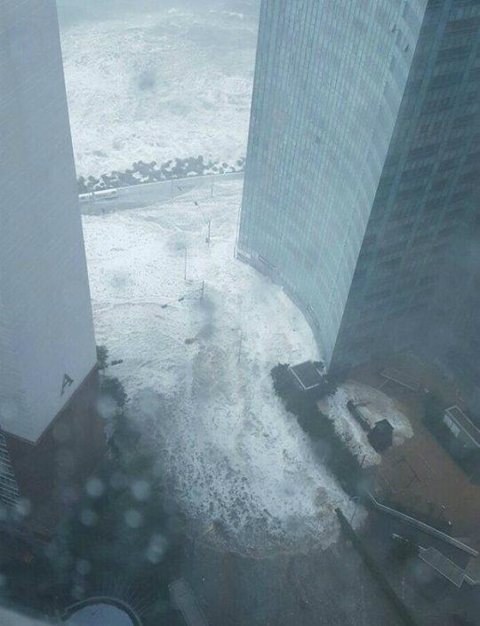 부산 태풍피해 '심각', 사망ㆍ실종 등 인명피해도 속출…부산은 지금 '마린시티'