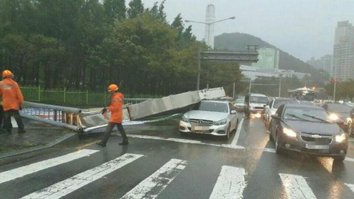 [뉴스pick] 차량 덮친 광고판…부산 경찰이 전한 부산 태풍 상황