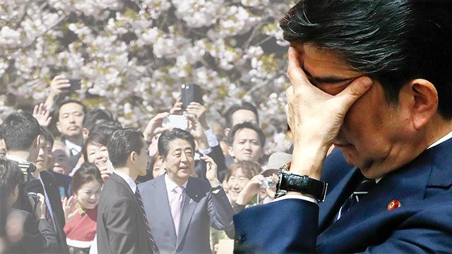 아베, 벚꽃놀이 행사 참가자 선정 관여 결국 인정