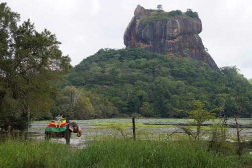 세상에서 가장 아름다운 섬, 인도양의 보석 스리랑카