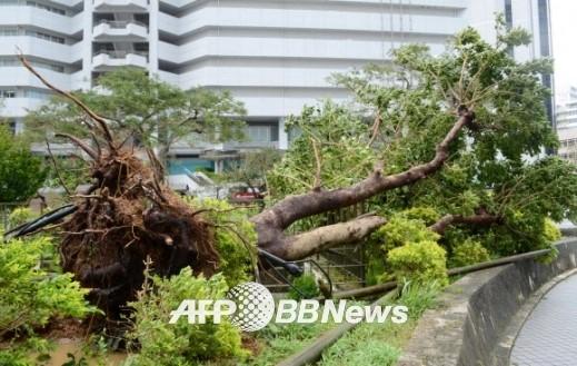태풍 너구리 일본 강타에 피해 속출…태풍 너구리 일본 규슈 상륙에 피해 더 커질 듯