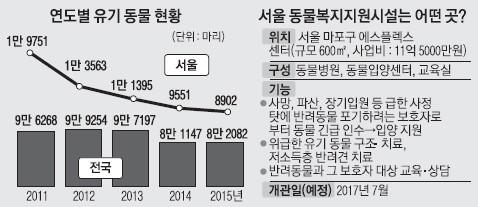 [단독] 서울 마포에 유기 동물 'SOS센터' 생긴다 | 인스티즈