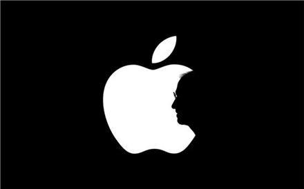 '완벽의 애플' 어디로?…황당한 수준의 버그 잇따라 [기사]
