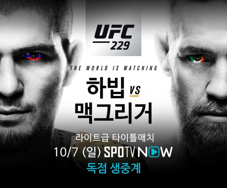 [UFC] '스턴건' 김동현