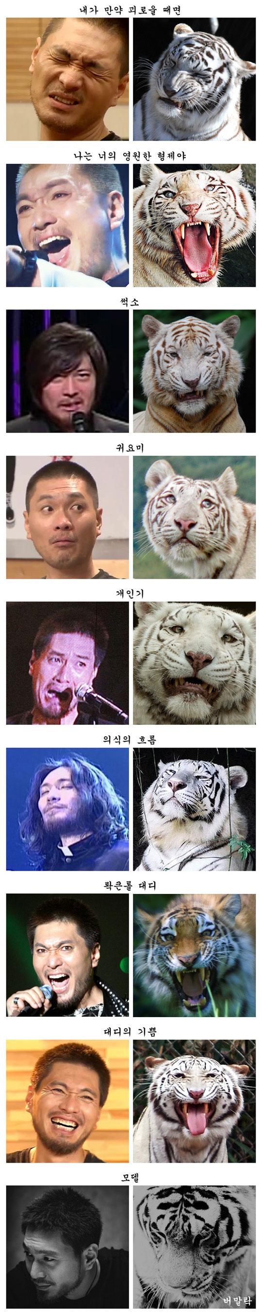 임재범-호랑이 비교사진 화제