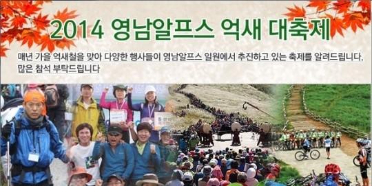 영남알프스 억새 대축제'팡파르