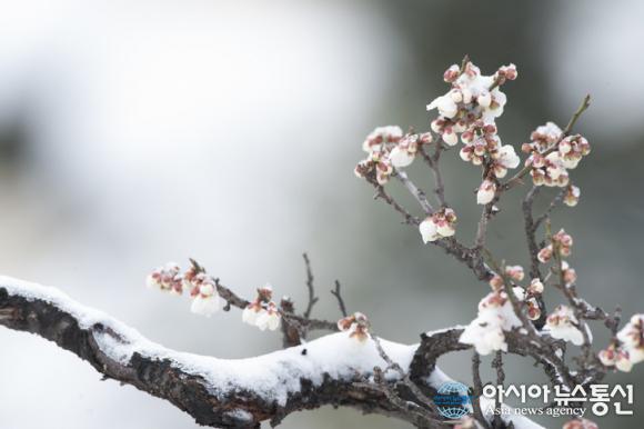 [오늘날씨] 오늘 서울 날씨 흐림…광주·창원·거제·여수날씨 '쌀쌀해' 내일날씨는 상당량의 눈과 비