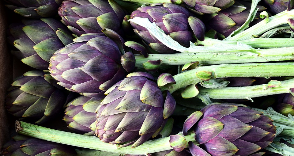 꽃이 피기 전의 꽃봉오리, '아티초크'의 효능과 부작용