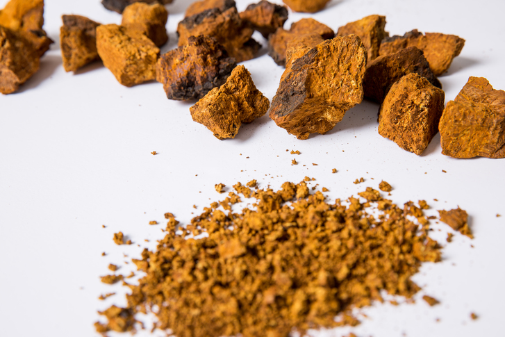 위에 좋은 음식 '차가버섯', 효과적으로 먹기 위해 뜨거운 물을 피해야?