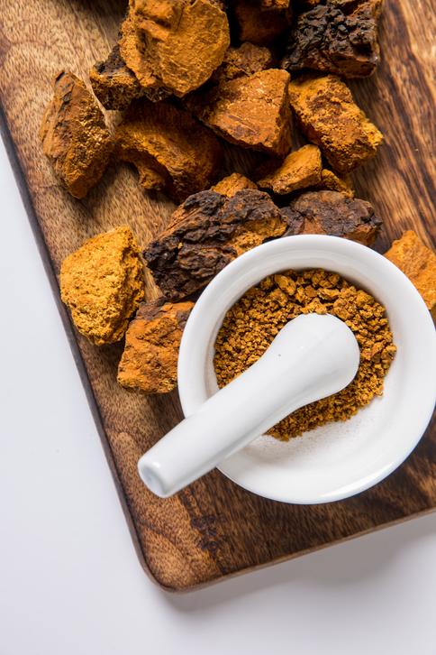 위에 좋은 음식 '차가버섯'...차가버섯 효능·분말먹는방법·부작용 한 번에 알아보기