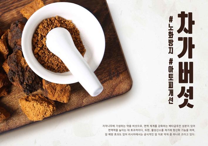 기관지에 좋은 음식인 차가버섯 효능·부작용과 차가버섯 분말 먹는 방법은?