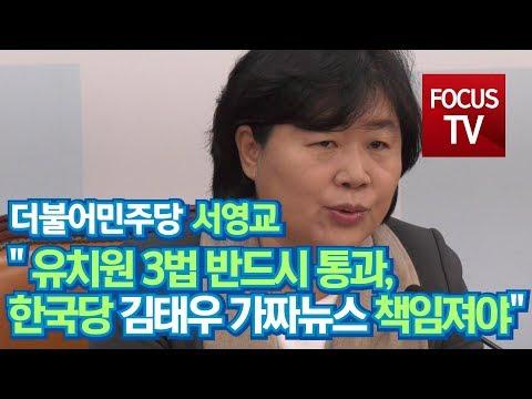 [영상] 서영교, 유치원 3법 반드시 통과되어야…김태우 사건 '자유한국당' 가짜뉴스 책임져야