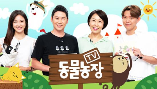 '동물농장' 죽음의 문턱에서 돌아온 유미·진돌이