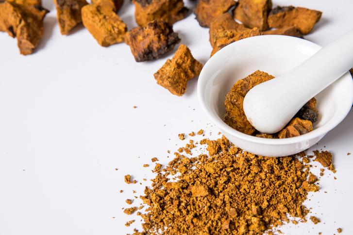 러시아의 산삼으로 불리는 '차가버섯', 각종 성인병과 암예방 식품으로 전해져...차가버섯 효능과 차가버섯 먹는법은?