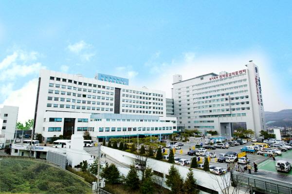 병문안 문화개선...시범병원 의정부성모병원 선정