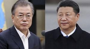 한국인·중국인 모두 상대국 '관광' 목적 입국 금지