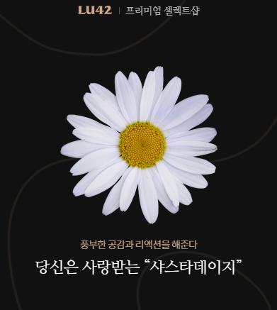 '꽃 mbti' Lu42 꽃 테스트 화제 되는 이유