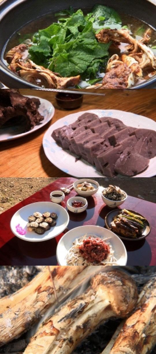 '한국인의 밥상' 최불암, 소백산 버섯 밥상 소개···송이·능이·까치버섯