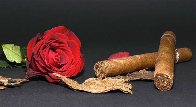 """[김이재 교수의 지도 읽어주는 여자]""""시가 없다면 천국도 싫다""""… 담배의 해악은 알았을까"""