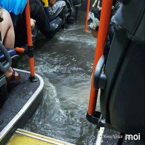 [사진] `물폭탄` 맞은 부산... 버스에 물 차고, 차 잠기고