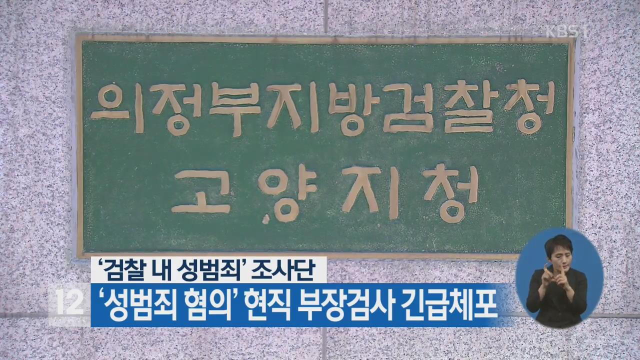 '검찰 내 성범죄' 조사단 '성범죄 혐의' 현직 부장검사 긴급체포