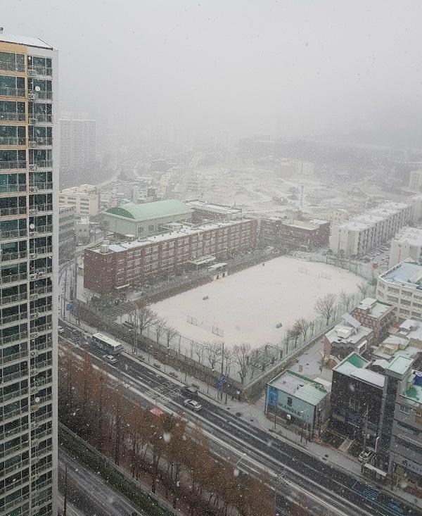 부산에도 함박눈…내일 날씨는 더 추워