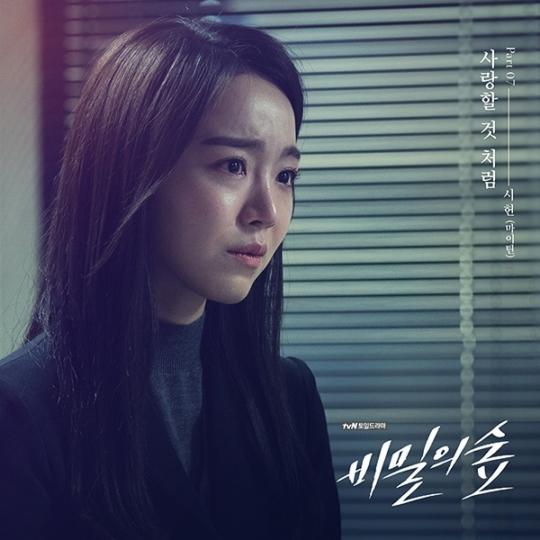 마이틴 시헌, tvN '비밀의 숲' OST 참여…데뷔 전부터 '핫'