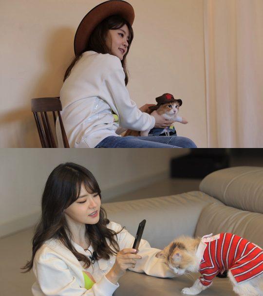 '개밥남2' 서유리, 다섯 마리 반려묘 공개