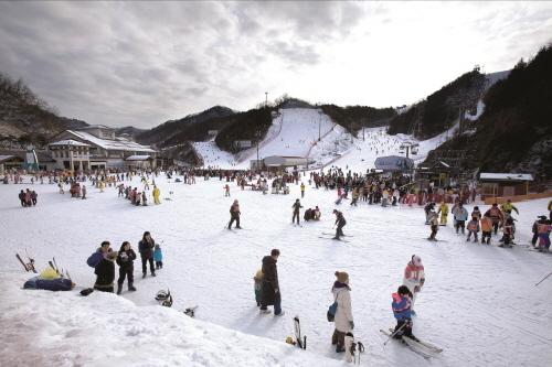 엘리시안강촌 스키장 '평창올림픽으로 뜨거운 2월 더욱 즐겁고 신나게'