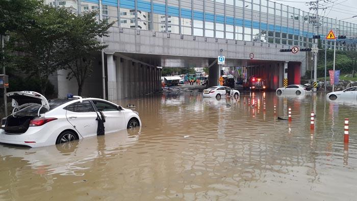 부산 폭우 피해 와중에 구의원ㆍ구청장 해외연수
