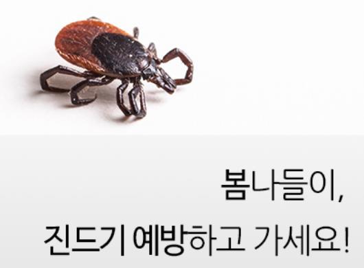 경북지역 SFTS 4명 확진…2명 숨져