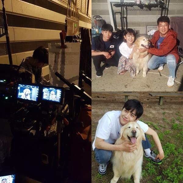 한국예술실용학교 애완동물관리계열 권순호 교수, 드라마 '당신의 하우스 헬퍼' 참여
