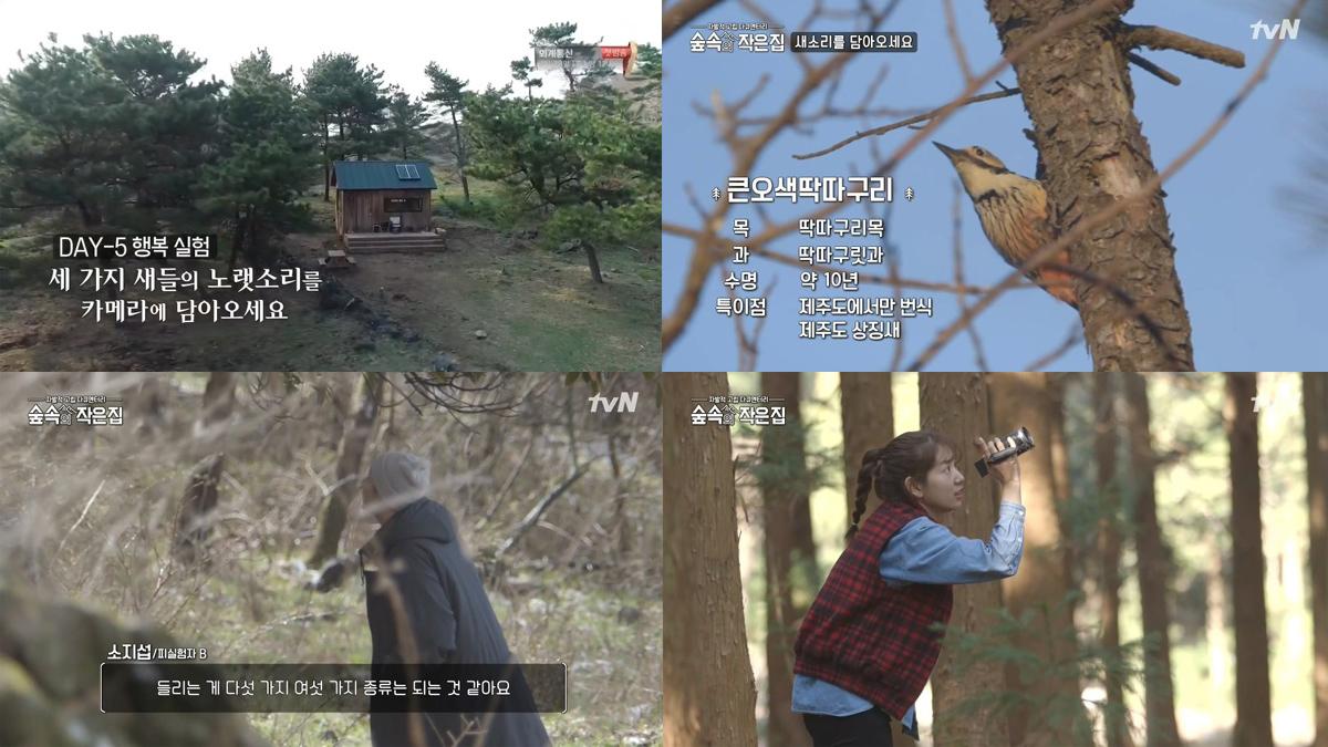 숲속의 작은 집 3회- 소지섭 박신혜의 서로 다른 소확행, 당신은 행복한가요?