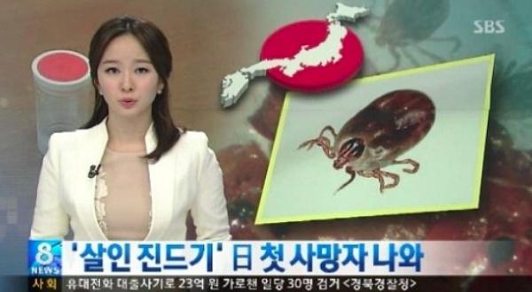 살인 진드기, 국내도 발칵 뒤짚어? ¨이미 일본에서는 사람이 개에게 감염돼¨ 눈길