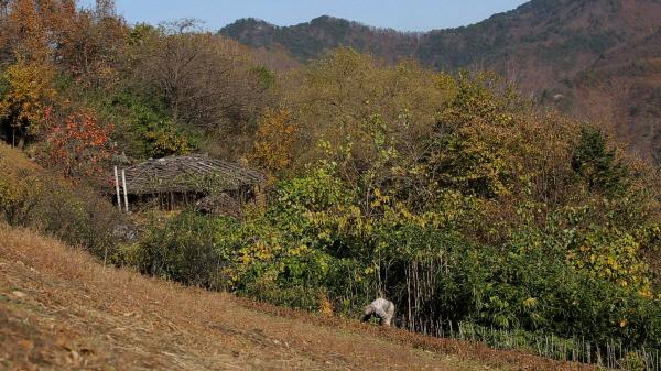 '다큐공감' 여든 네 번째, 태백 준령 사무곡의 겨울…마지막 화전민