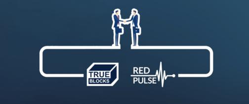 트루블록스-레드펄스, 블록체인 파트너십 체결