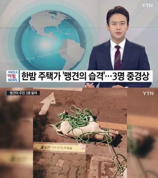 한밤 중 사람 습격한 '맹견' 도고아르젠티노…어떤 종이길래?
