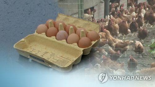 """살충제달걀 소식에 """"도대체 뭘 먹으란 건가"""", """"완전 깡패집단"""" 네티즌 분노 표출"""