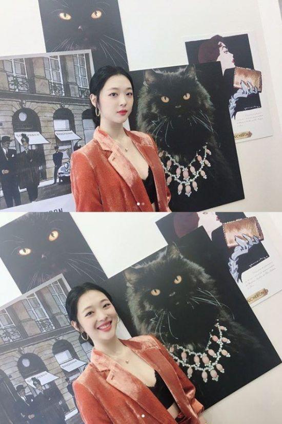 """설리의 두 얼굴? 고양이 앞 새침vs활짝 """"미아옹"""" [스타엿보기]"""