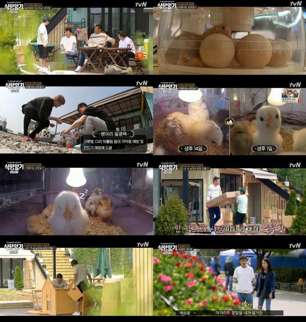 '식량일기' 박성광, 보아와 꽃박람회 데이트…서장훈-이수근 '닭장 만들기'