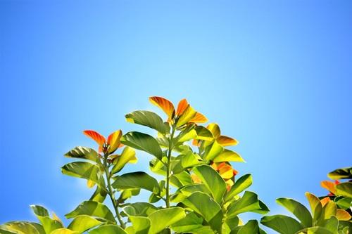 [오늘 날씨] 13일, 전국 맑은 가을날…오후 최고 23~29도