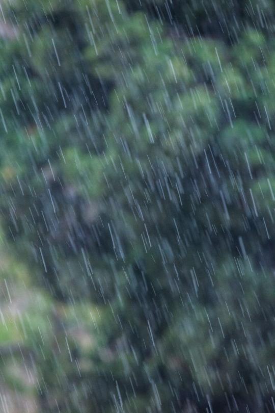 [내일날씨] 충청·경상내륙 내일 새벽까지 100mm 비…대구 36도등 폭염특보 확대
