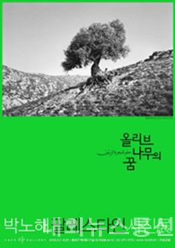 박노해 팔레스타인 사진展, '올리브나무의 꿈'