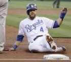 '롱 볼의 신기원'…MLB 한 시즌 최다 홈런 '5천694개'