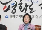 민주, 한국당에 '안보장사 중단' 촉구…남북·북미대화 강조